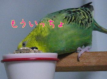 f0196665_2326103.jpg