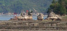 三津口湾の干潟を眺めながら_e0175370_2324496.jpg