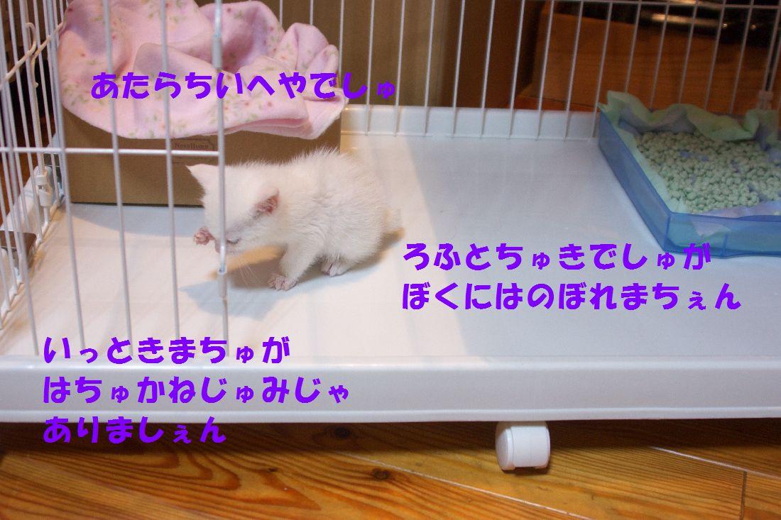 f0197682_22444722.jpg