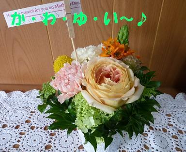 a0154801_10532228.jpg