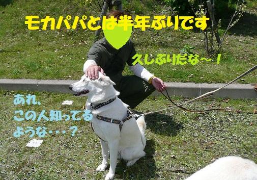 f0121712_15234526.jpg