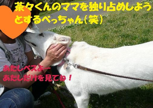f0121712_15235195.jpg