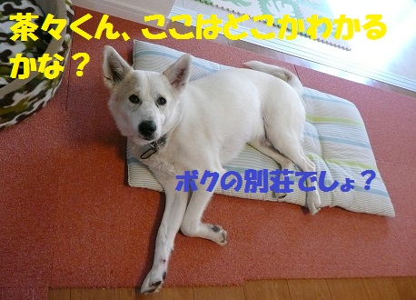 f0121712_15352026.jpg