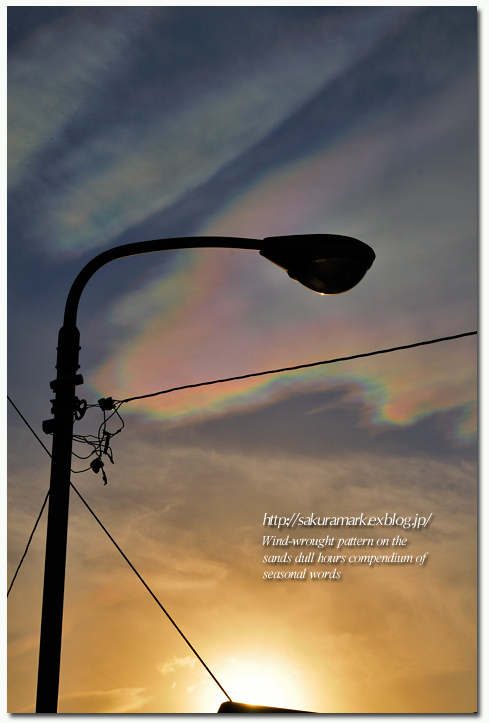 夕空に浮かぶ彩雲。_f0235723_115120.jpg