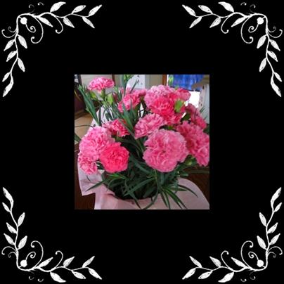c0068639_2164618.jpg