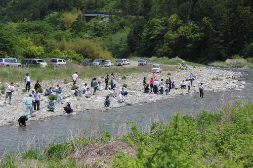興津川、鮎試し釣り。_f0175450_1433089.jpg