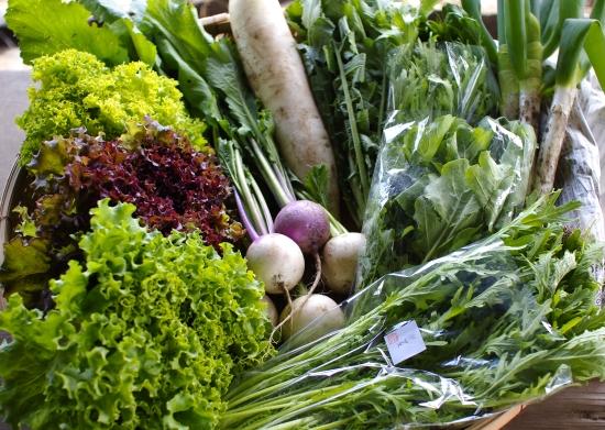 今週の野菜セット(5/17~5/21着)_c0110869_21321745.jpg