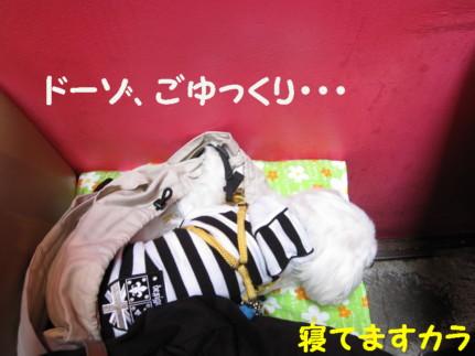 b0193480_1672783.jpg