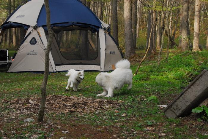 夏サモキャンプの下見_a0049296_19565962.jpg