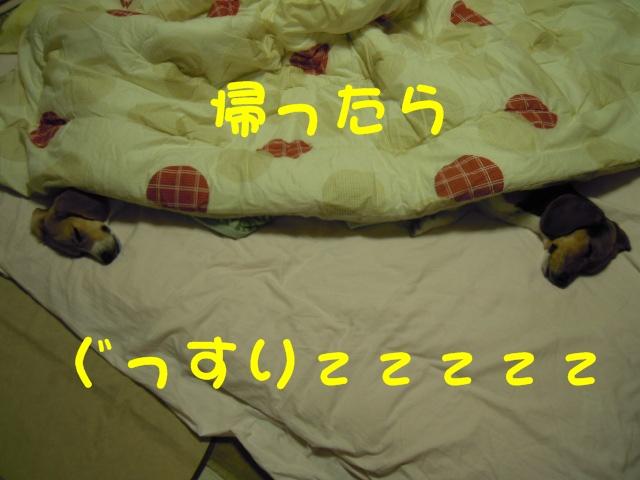 c0166622_8194073.jpg
