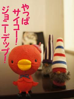 こいするピヨンセちゃん_d0196124_17305039.jpg