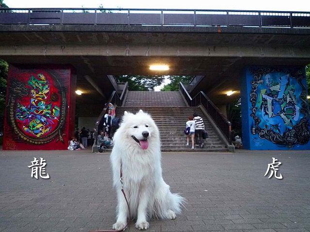 日曜日もおっきな公園_c0062832_65642.jpg