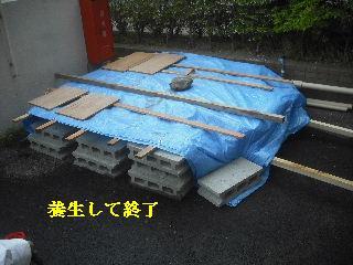 f0031037_20502261.jpg