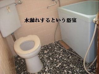 f0031037_20541544.jpg