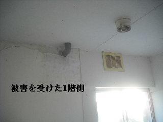 f0031037_20543192.jpg