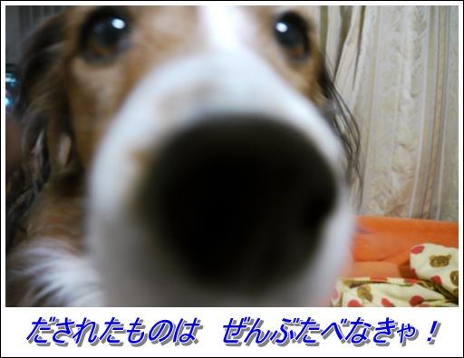 f0080745_002088.jpg