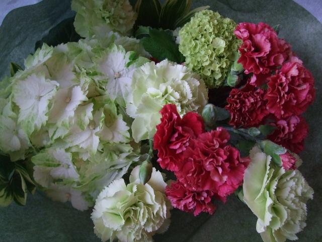 オークリーフ(母の日の花束コレクション)_f0049672_1813936.jpg