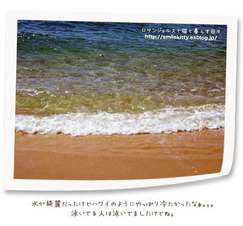 b0203675_1251516.jpg
