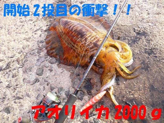f0183484_8464640.jpg
