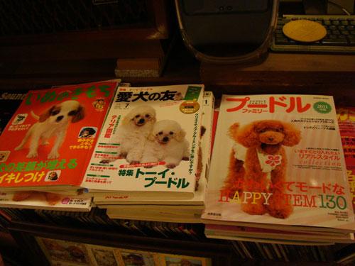 犬喫茶_a0047200_2035925.jpg