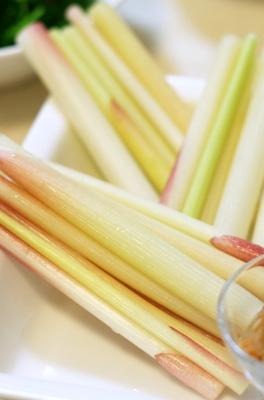 ++茗荷竹やウドがいっぱい自家製鰹のたたき++_e0140921_1054986.jpg