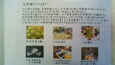 「白老会」 ~ 第5回 「梅酒会」 スペシャルver_e0173738_1255733.jpg