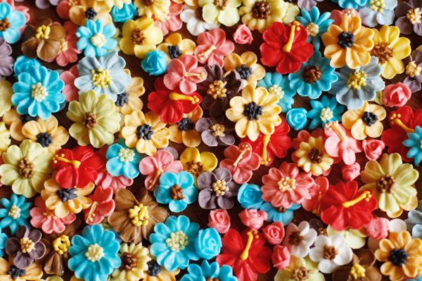 お花がいっぱい(´∀`。)_f0149855_2325873.jpg