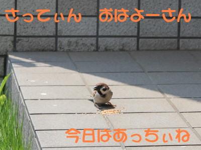 b0158061_2127449.jpg