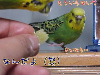 f0196665_23394443.jpg