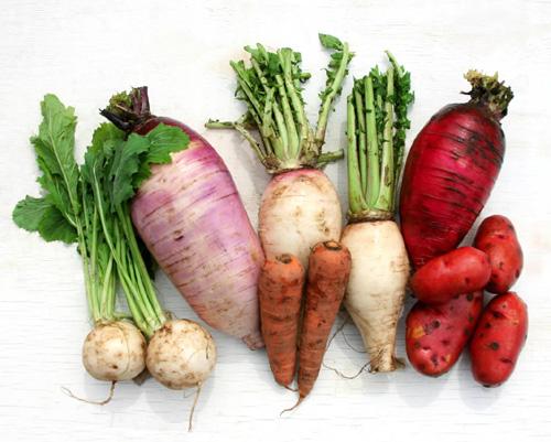 本物の未来へつながる、本物の野菜とは何か?_a0028694_1615648.jpg