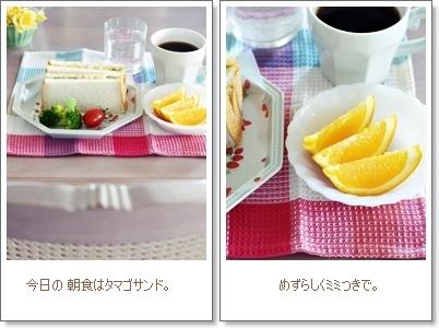 唐揚げでうめたお弁当 & 朝食_e0015700_18535413.jpg