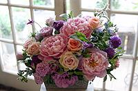 母の日はありがとうございました_c0114811_7265363.jpg