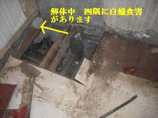 震災被害による床工事_f0031037_201134.jpg