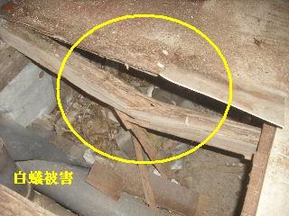 震災被害による床工事_f0031037_201581.jpg