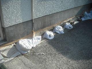 震災被害による床工事_f0031037_201848.jpg
