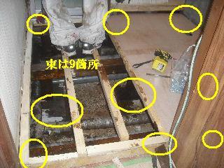 震災被害による床工事_f0031037_204236.jpg