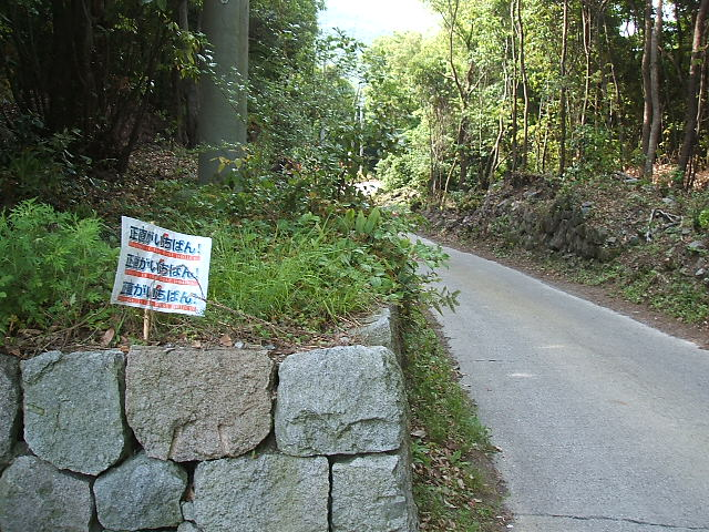 選挙前哨戦_c0052876_820943.jpg