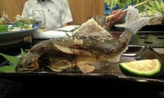 旬の魚で甦った_d0015306_190057.jpg