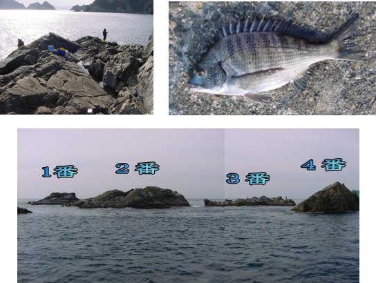 魚釣りの穴場_e0209208_11422688.jpg