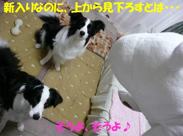 c0147241_21472769.jpg