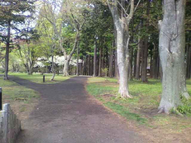 見晴公園の写真_b0106766_23463524.jpg