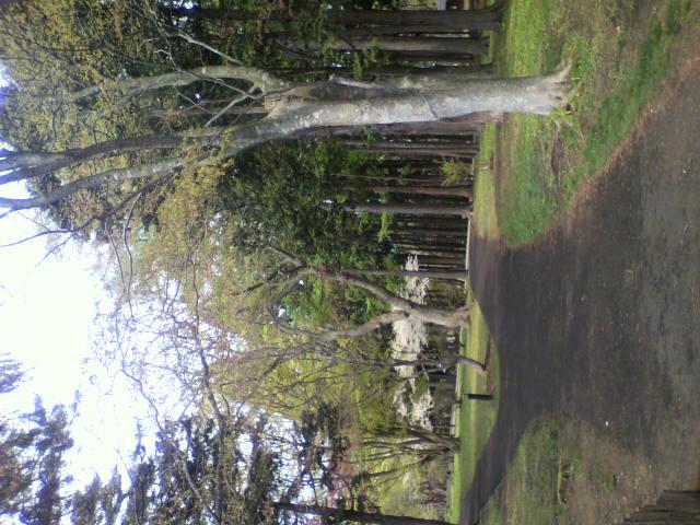 見晴公園の写真_b0106766_23463582.jpg