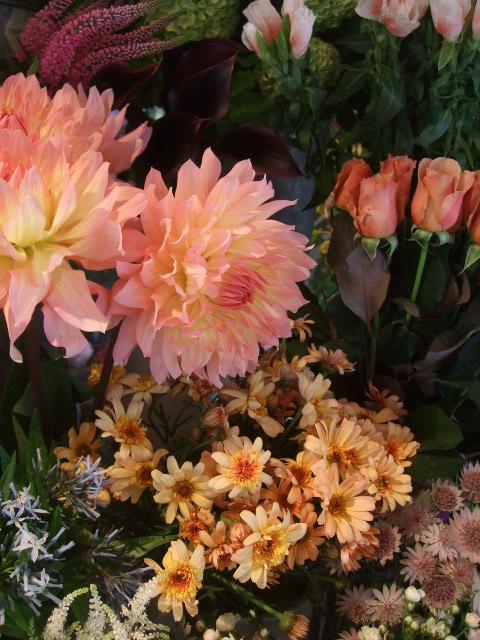 オークリーフ(5月の花はいいですね・・)_f0049672_18552670.jpg