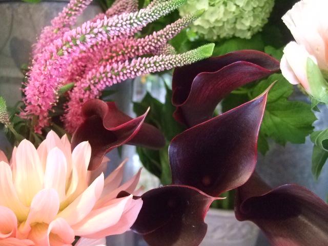 オークリーフ(5月の花はいいですね・・)_f0049672_1855325.jpg