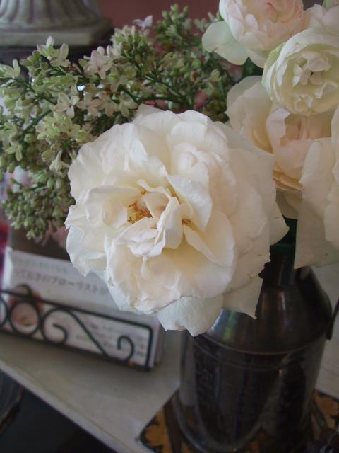 オークリーフ(5月の花はいいですね・・)_f0049672_18581724.jpg