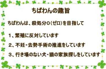 新着情報   _b0181097_18461454.jpg