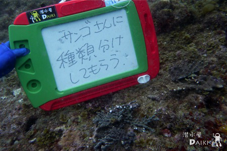 2011.05.21 Sat. みなべ・田辺_e0158261_235226.jpg