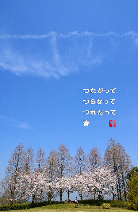 c0186592_1118345.jpg