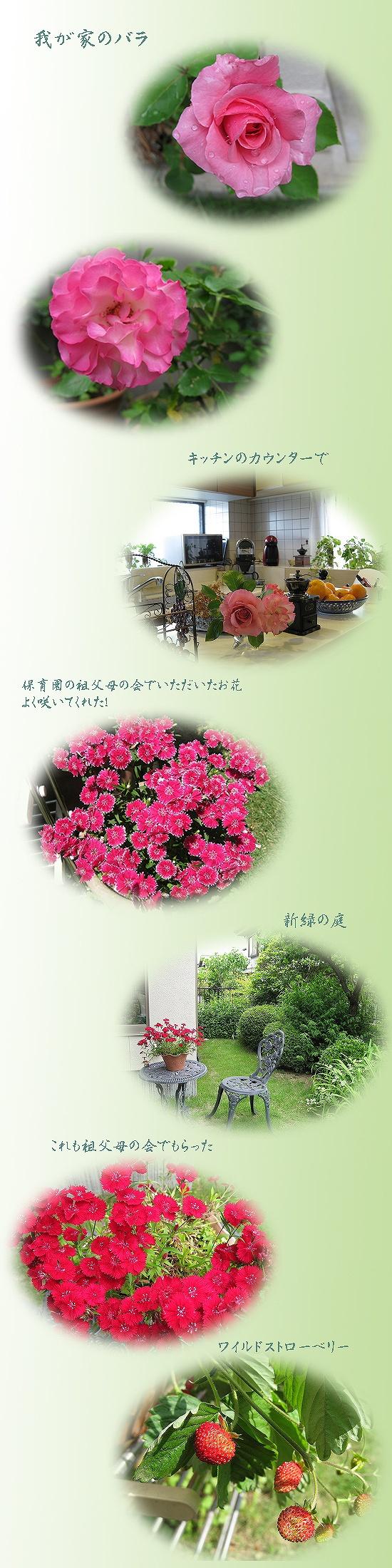 c0121496_18263852.jpg