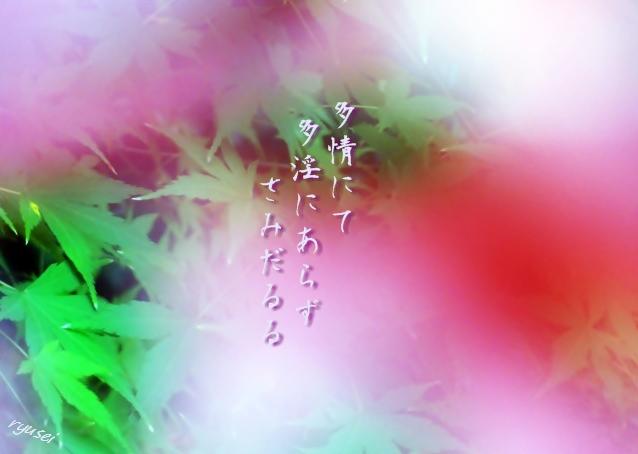 f0053297_1191861.jpg